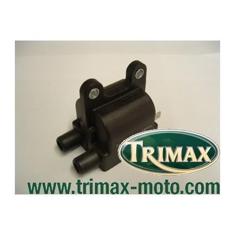 bobine d'allumage pour Triumph 2 et 4 cylindres